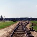 La ferrovia in ingresso